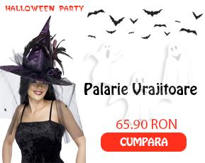 palarie-vrajitoare-produs-5677